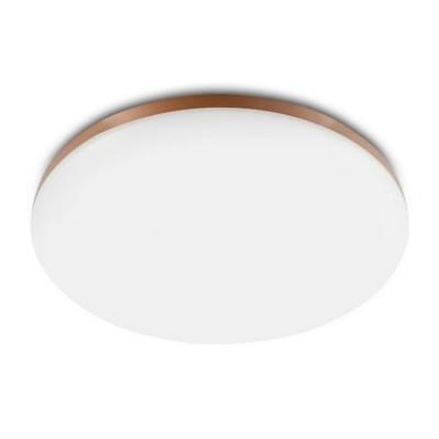 Потолочная лампа Xiaomi Yeelight LED Ceiling Lamp 470mm (YLXD50YL)
